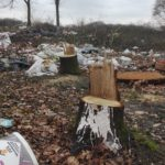 Dépôt sauvage et déboisement - ancien camp de Rom - Mery-sur-Oise- 2017 - Mélisande BOURGEOIS